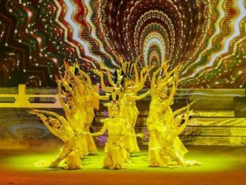 第31届遂州荷花展览:主题晚会现场舞蹈