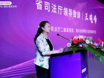 北京大成律师事务所国企混改论坛领导发言