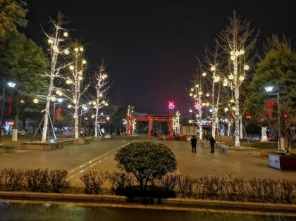 树灯美陈亮化